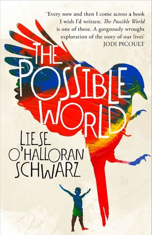 The Possible World Book Cover