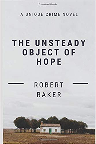 Unsteady Object of Hope Book Cover