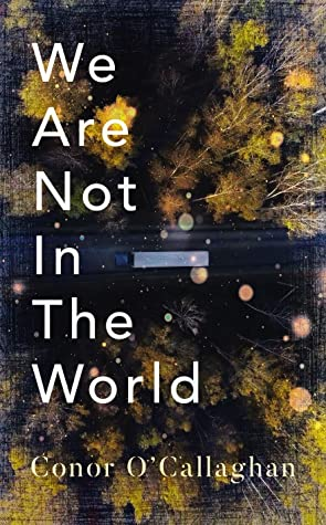We Are Not in the World Book Cover